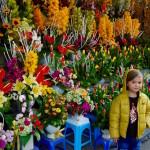 Celebrating the Tet Vietnamese Holiday in Hanoi