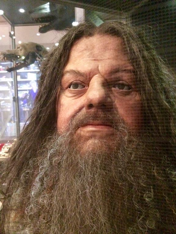 Anatomical Hagrid